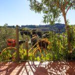 Vacanza in bicicletta Campiglia Marittima - Villa Denise