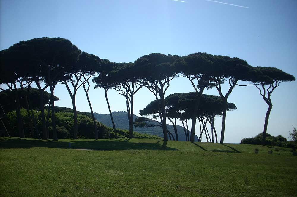 I Parchi della Val di Cornia - Villa Denise