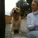 Vacanze con Animali Mare Toscana - Villa Denise